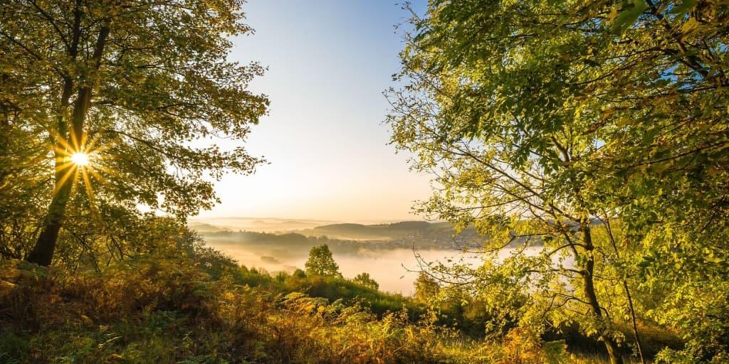 Herbstliche Wälder in der Vulkaneifel